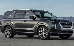 Picture car, machine, SUV, grey, Hyundai, side, big car, Hyundai Palisade