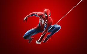 Picture Spider-Man, Insomniac Games, Sony Interactive Entertainment, Spider-Man (2018)