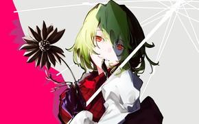 Picture flower, girl, Touhou, Touhou, Touhou, Yuuka Kazami