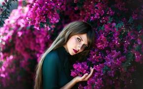 Picture look, girl, flowers, nature, pose, photo, Lisa, bokeh, Melanie Dietze