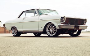 Picture Chevrolet, Coupe, White, Nova
