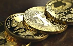 Picture blur, logo, coins, currency, bitcoin, GURT, bitcoin