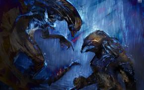 Picture background, Stranger, Predator, battle, alien, predator