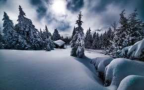 Picture winter, snow, trees, landscape, nature, house, ate, the snow, Robert Didierjean