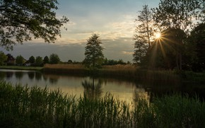 Picture forest, grass, the sun, clouds, rays, trees, reflection, shore, pond