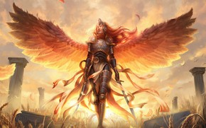 Picture Valkyrie, burning eyes, valkyrie, swords in the hands, Magic the Gathering, armor plate, wingspan