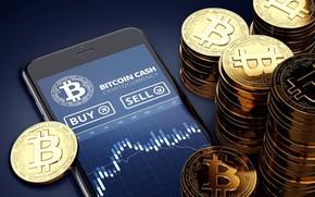 Wallpaper blur, schedule, smartphone, coins, bсh, bitcoincash
