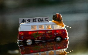 Picture water, macro, reflection, background, toy, snail, puddle, bus, machine, journey, trip, toy, adventure