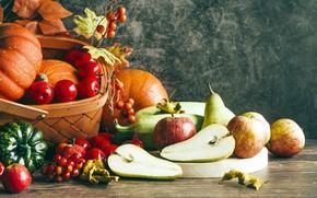 Picture autumn, apples, pumpkin, pear, fruit