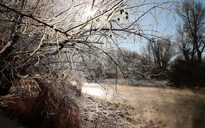Picture winter, landscape, nature, river, beauty, frost