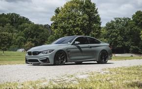 Picture BMW, F82, Nardo Grey