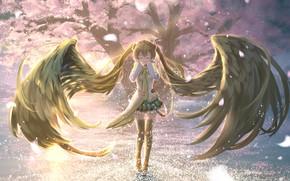 Picture girl, Sakura, Hatsune Miku, Vocaloid