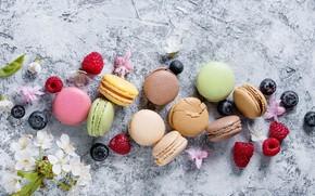 Picture berries, colorful, flowers, fruit, berries, macaroons, macaron, macaroon