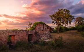 Wallpaper road, autumn, summer, the sky, grass, clouds, sunset, nature, old, tree, mood, the building, Windows, ...