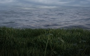 Picture grass, storm, sky, nature, atmosphere