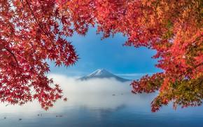 Picture autumn, leaves, trees, lake, mountain, Fuji, trees, autumn, mountain, lake, leaves, Fuji, SUNTARARAK SAOWANEE