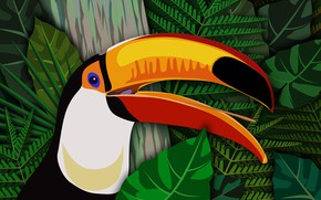 Picture bird, vector, beak, Toucan
