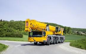 Picture crane, engineering, liebherr, ltm1250