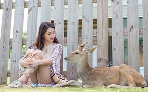 Picture girl, the fence, deer