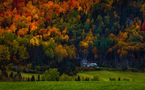 Picture autumn, forest, trees, mountains, house, slope, house, mansion, the colors of autumn, autumn nature, bright …