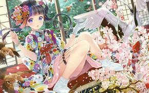 Picture Birds, Girl, Anime, Art, Sparrows, Crane