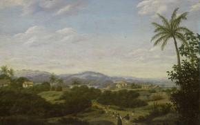 Picture oil, picture, Frans Post, 1680, Frans Post, Brazilian Landscape