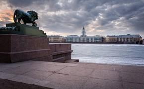Picture river, building, Leo, Saint Petersburg, sculpture, Russia, promenade, Cabinet of curiosities, Admiralty embankment, The River …