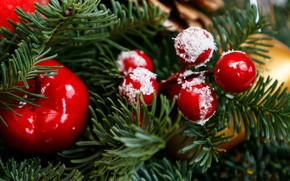Picture winter, branches, berries, holiday, Apple, ball, fruit, Christmas, red, New year, tree, needles, bokeh, Christmas …