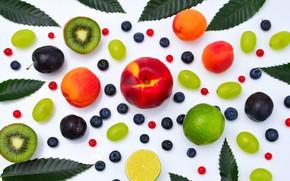 Picture berries, lemon, grapes, white background, fruit, plum, peach