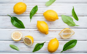 Wallpaper leaves, lemon, lemon, fresh, wood, leaves, fruit, slice