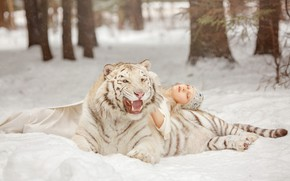 Picture winter, forest, white, girl, snow, trees, branches, nature, face, tiger, pose, background, each, stay, sleep, …