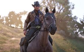 Picture horse, hat, revolver, Rockstar, Bandit, Red Dead Redemption 2, Arthur Morgan