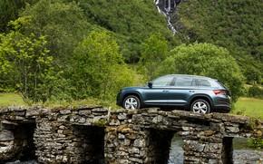 Picture water, bridge, vegetation, side view, SUV, Skoda, Skoda, 2016, Kodiaq