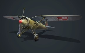 Picture Fighter, Poland, PZL P.11c