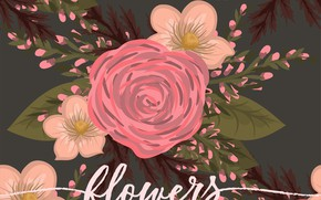 Picture flowers, background, flowers, pattern, leaves