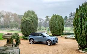 Picture auto, nature, Land Rover, Evoque, R-Dynamic