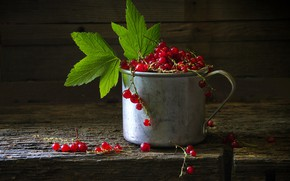 Picture leaves, light, berries, the dark background, Board, mug, still life, red, currants, red currant