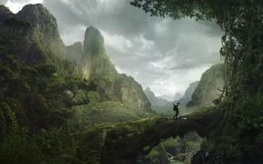 Picture mountains, traveler, mountain, Solomon Kane, Africa Landscape