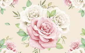 Picture design, background, roses, pink, white