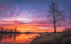 Picture the sky, water, trees, sunset, nature, river, the evening, Tomczak Michael