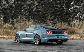 Picture lights, Mustang, Ford, rear view, Mustang GT, Roush, 2019, Performance Stage 3