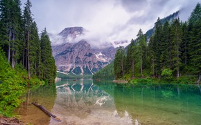 Picture forest, clouds, mountains, fog, comfort, lake, reflection, rocks, shore, tops, view, the bottom, boats, ate, …