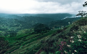 Picture road, the sky, mountains, vegetation, slope