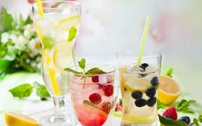 Picture berries, cocktail, glasses, drink, citrus