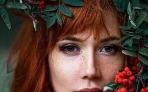 Picture eyes, girl, hair, freckles, red, Rowan, Maxim Romanov