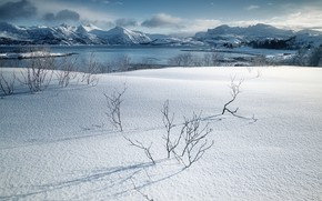 Picture snow, Norway, Senja