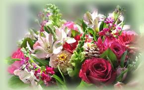 Picture flowers, background, bouquet, composition