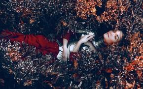 Picture grass, look, girl, style, armor, fantasy, lies, image, photoart, Kindra Nikole