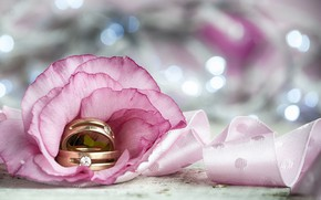Picture flower, tape, Engagement rings, wedding