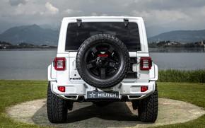 Picture rear view, Wrangler, Jeep, Unlimited, 2019, Militem, Ferōx